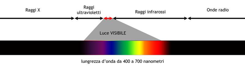 Solo una parte dello spettro elettromagnetico è percepita dall'occhio e dal cervello umani